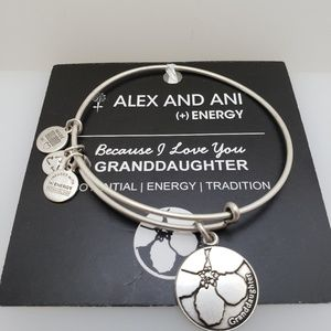NWT Alex and Ani granddaughter bangle silver